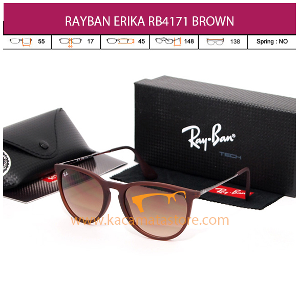 RAYBAN ERIKA RB4171 BROWN