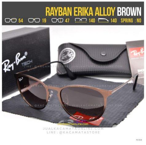 Gambar Kacamata Terbaru Rayban Erika Alloy Brown